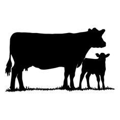 Cow With Calf Die-Cut Decal Car Window Wall by BeeMountainGraphics