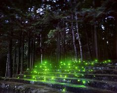 Landscape Light Installations by Barry Underwood - land art Landscape Photography Tips, Landscape Photographers, Landscape Photos, Abstract Landscape, Forest Landscape, Light Painting, Instalation Art, Landscape Lighting Design, Colossal Art
