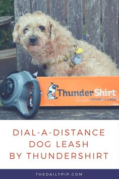 Ruby reviews the new Dial-A-Distance by ThunderShirt