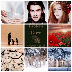 Goodreads | Broken Dove (Fantasyland, #4) by Kristen Ashley — Reviews, Discussion, Bookclubs, Lists