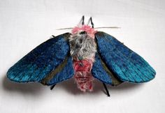 Japanese artist Yumi Okita who now lives in North Carolina, United States creates incredible moths and butterflies which look just as beautiful as the real thing but scaled up to giant proportions. Description from dailynewsdig.com. I searched for this on bing.com/images