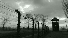 Auschwitz Birkenau by Auschwitz Study Group member Artur Chmielewski