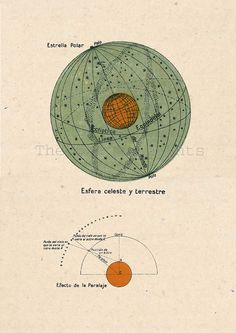 Astronomy Print Celestial Sphere Terrestial by TheCuratorsPrints