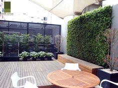 Jardin Vertical - Galeria
