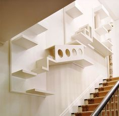 This built-in cat maze will offer endless entertainment! Search for your dream home at http://www.dongardner.com/. #PetFriendly #Home #Design