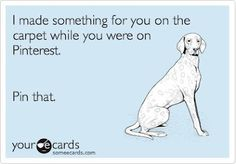 I can SO see my dog's saying this..LOL!