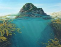 Surfacing at Motumahanga, Motumahanga Island, Sugar Loaf Islands, New Plymouth- Jacqueline Elley