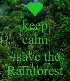 keep calm  #save the Rainforest