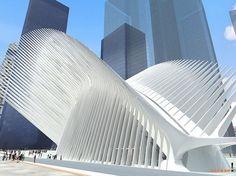 World Trade Center Transportation Hub - Picture gallery