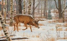 """Silent Pursuit"" by Cynthie Fisher ~ North American Big Game whitetail deer Wildlife Paintings, Wildlife Art, Animal Paintings, Deer Paintings, Whitetail Deer Pictures, Deer Pics, Hunting Art, Deer Hunting, Whitetail Hunting"
