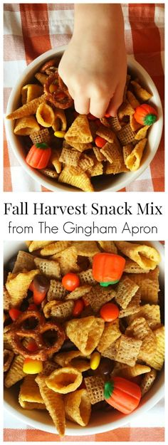 Fall Harvest Snack M