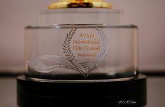 award for Hidden Destiny by W.A.Case 2016