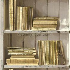Oude boeken tegen gebladderde muur behang SD3533, Splendour van ...