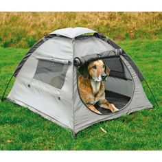 Here you go Shelby, need this for camping lol