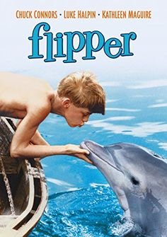 Another one of my favorite shows. I still love dolphins! Flipper (TV show) they call him flipper, flipper faster than lightening, no one you see is smarter than he. 70s Tv Shows, Great Tv Shows, Movies And Tv Shows, Childhood Tv Shows, My Childhood Memories, Film Logo, Mejores Series Tv, Emission Tv, Image Film