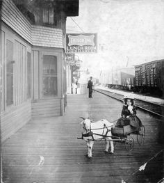 A little girl in a goat cart on the boardwalk outside a Harvey House (a 20-minute lunch stop for train passengers) in Rogers, Arkansas, c. 1901.  Part of the Domino Danzero Family Photograph Collection at Missouri State University.