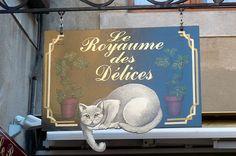 9 septembre 2007 Cité de Carcassonne En se promenant dans les rues (11)