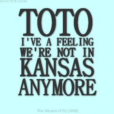 ToTo--- hahahahahaha i could put toto i've a feeling we're not in kansas anymore... and tasha isn't in her 20's anymore either!