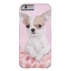 Pink Chihuahua puppy iPhone 6 case