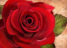 Lovely Rose Painting Print on Wrapped Canvas