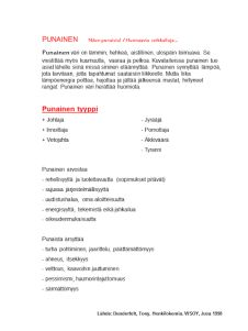 Tunnista temperamenttisi -testi – Uusi Ikaalinen Classroom Ideas, Decor, Decoration, Decorating, Dekoration, Deck, Deco, Ornaments