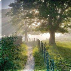 Country lane-crisp fresh mornimg air, sunshine and beasutiful scenery. Foto Nature, All Nature, Country Farm, Country Life, Country Roads, Country Living, Beautiful World, Beautiful Places, Beautiful Pictures