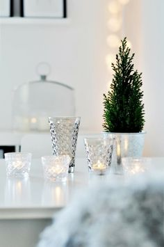 glassware and a tiny tree #holidays #winter #christmas
