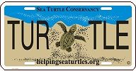Sea Turtle Conservancy :: Join STC and Adopt-A-Turtle