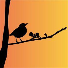 Blackbird, Vogel, Dierlijke, Black - Gratis afbeelding op Pixabay