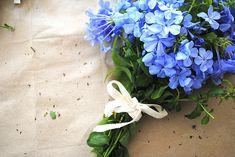 "teacupsandrain-blog: "" tinywhitedaisies: "" hooraydesign: "" Beautiful styling by Mary of Olivet! DIY Hand Tied Bouquet - Olivet - "" """