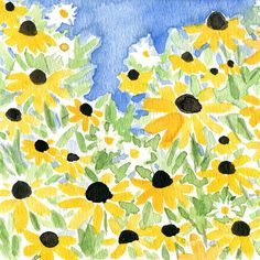 Black eyed Susan field art print of watercolor by TheJoyofColor, $21.00