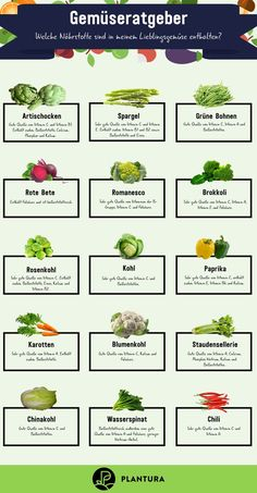 Vegetable types: How to divide vegetables - Plantura - Knowing the nutrients in food can be interesting for a healthy diet. We& show you here which -