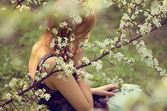 meadow reading