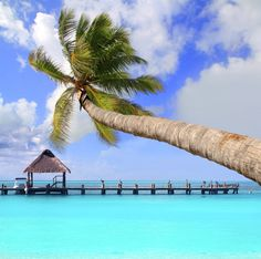 Cancun, Mexico   http://bit.ly/OrbDealsPin