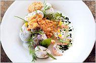 Norma's Shrimp and Sea Urchin Powder by Chef René Redzepi's