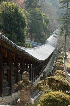 「神社 大きな」の画像検索結果
