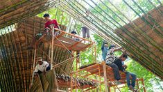 Atelier COLE designs an innovative fundraising merchandise store for Free the Bears in Laos with the help of our most excellent partners Building Trust. Bamboo Roof, Bamboo Tree, Landscape Architecture, Architecture Design, Bamboo Landscape, Moon Bear, Bamboo Design, Bamboo Crafts, Store Fronts