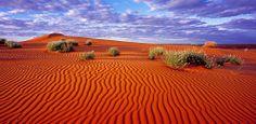 Desierto de Simpson (Australia)