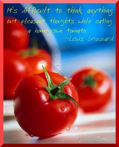 The best fresh homegrown fruit (vegetable?) on Earth.............
