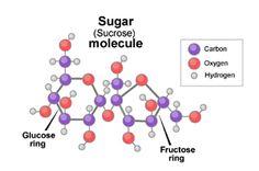 sugar-sucrose-Molecule.jpg (300×199)