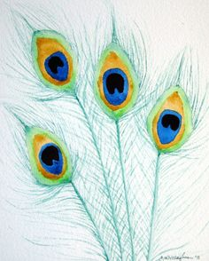 Peacock Feathers Art print by Carrie Willingham - link to Etsy