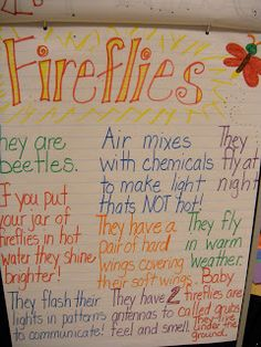 Peace, Love and Kindergarten: Dragonflies and Fireflies!
