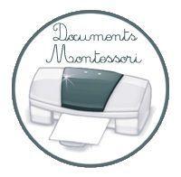 Jeu de la loupe : Les animaux des continents - Montessori EtCie