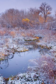 """Stillness Of A Late Fall"" by John De Bord Photography   Redbubble"