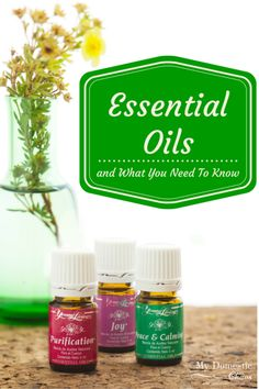 Essential Oils and What You Need to Know (the basics) by My Domestic Chaos
