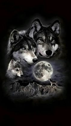 -Super tattoo back moon wolves Ideas Ideas de tatuajes super lunares lobos See it Wolf Images, Wolf Photos, Wolf Pictures, Beautiful Wolves, Animals Beautiful, Wolf Pack Tattoo, Tattoo Wolf, Two Wolves Tattoo, Wolf And Moon Tattoo