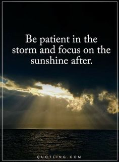 Quotes Be patient in the storm and focus on the sunshine after.