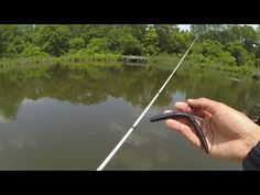 Fishing Senkos For Bass - YouTube