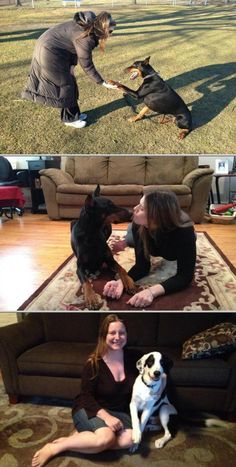 The Canine Cure, LLC provides force-free dog training in the comfort of your home. They offer problematic dog and new puppy classes. Check out their discounts and packages. Pet Trainer, Puppy Classes, Dog Training Videos, Free Dogs, Dog Behavior, New Puppy, Best Relationship, Trainers, The Cure