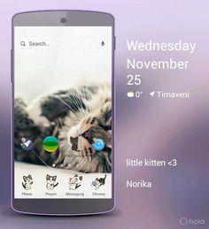 Kitty Little Kittens, Kitty, Messages, Little Kitty, Kitty Cats, Kitten, Text Posts, Cats